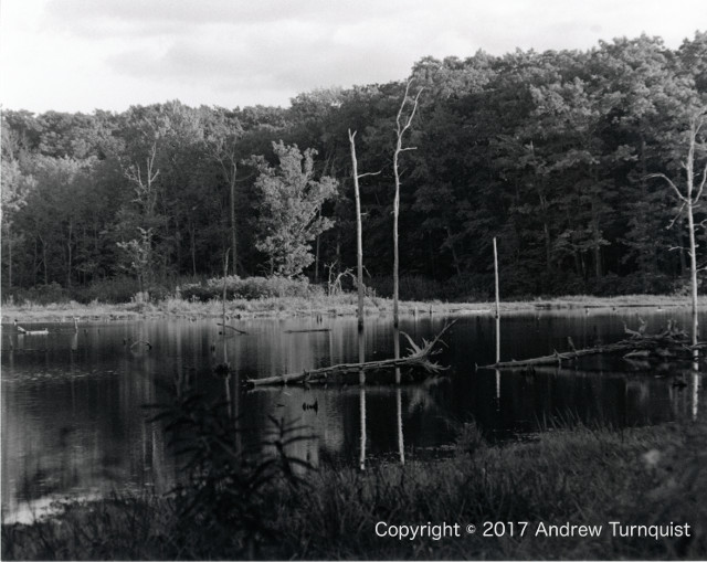Teter Pond, Finger Lakes National Forest